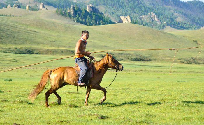 un homme sur cheval