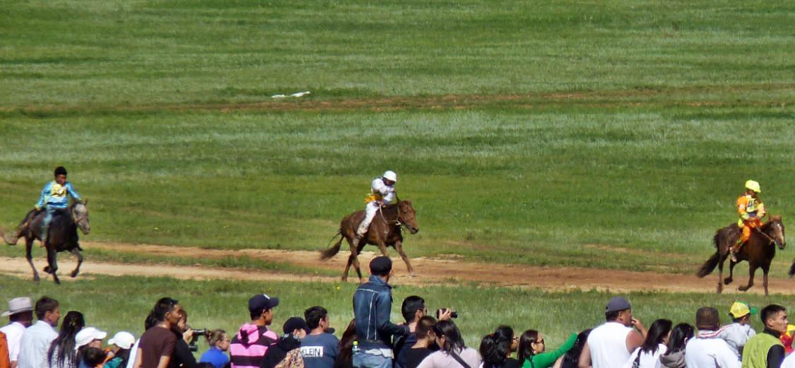 chevaux rapide